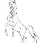 Spirit – Der wilde Mustang 3