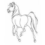 Spirit – Der wilde Mustang 4