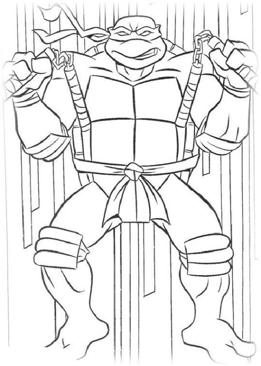 Teenage Mutant Ninja Turtles 14