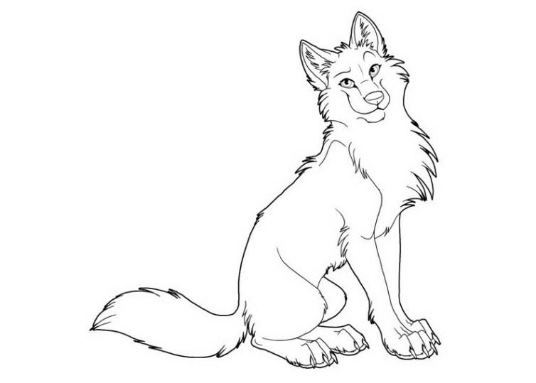 Ausmalbilder Für Kinder Wolf 12