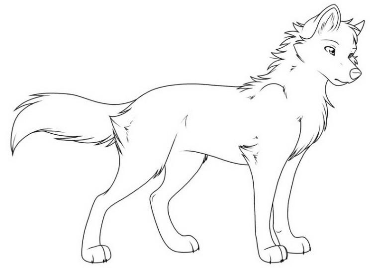 Ausmalbilder Für Kinder Wolf 14