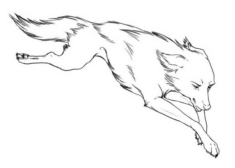 ausmalbilder für kinder wolf 9