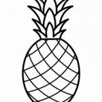 Ananas 10