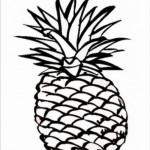 Ananas 11