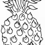 Ananas 13