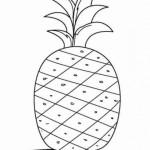 Ananas 14