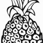 Ananas 9