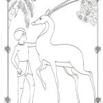 Antilope 6