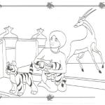 Antilope 7