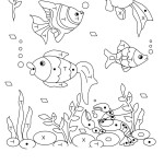 Aquariumfische 10