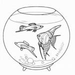 Aquariumfische 5