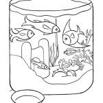 Aquariumfische 6