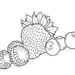 Erdbeere 22