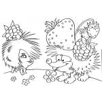 Erdbeere 27