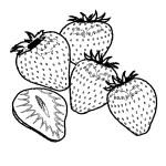 Erdbeere 28