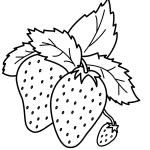 Erdbeere 30