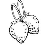 Erdbeere 31