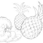 Fruchte Obst und Beere 7