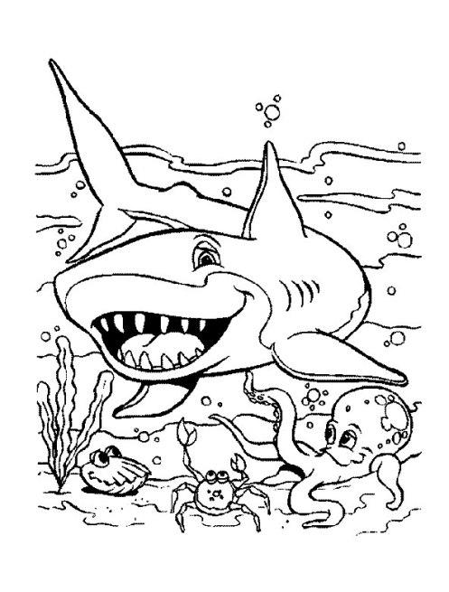 ausmalbilder für kinder haifisch 9