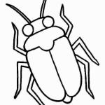 Insekten 12