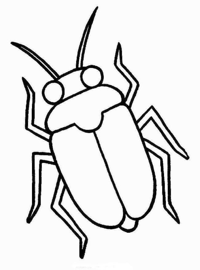 ausmalbilder für kinder insekten 12