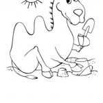 Kamel 15