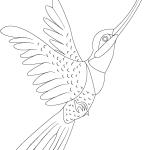Kolibri 4