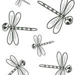Libelle 15