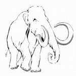 Mammut 15