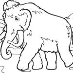 Mammut 3