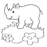 Nashorn 5