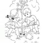 Pflanzen 12