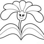 Pflanzen 4