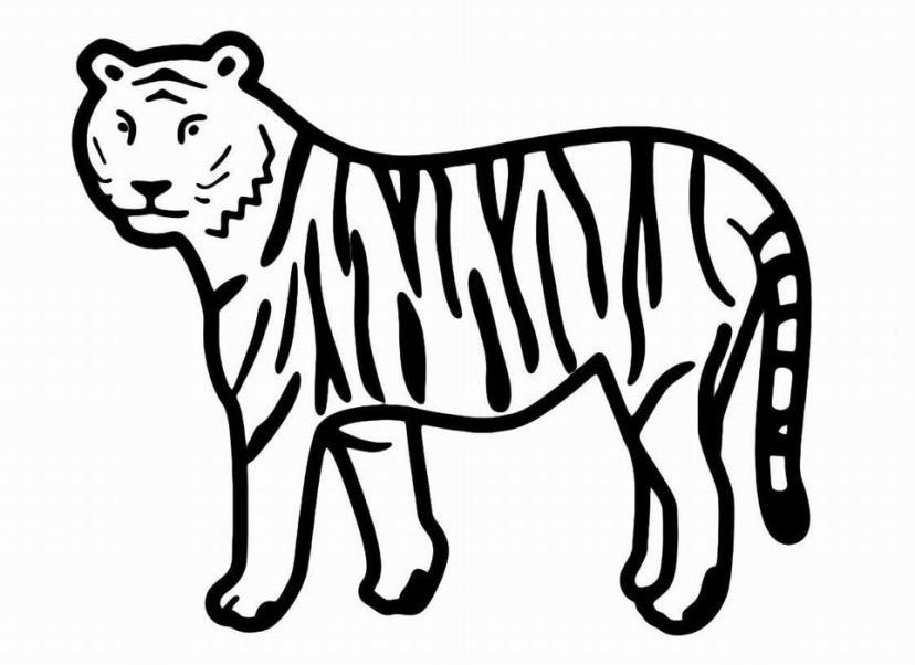 ausmalbilder für kinder tiger 6
