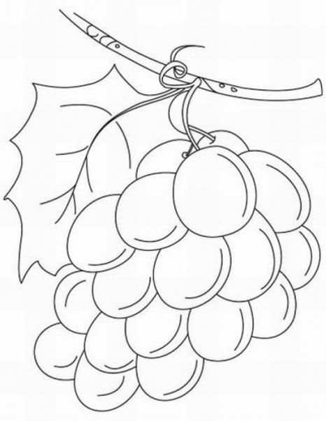 Ausmalbilder für Kinder Weintraube 10