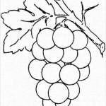 Weintraube 5