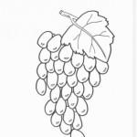 Weintraube 7
