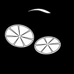 Zitrone 4