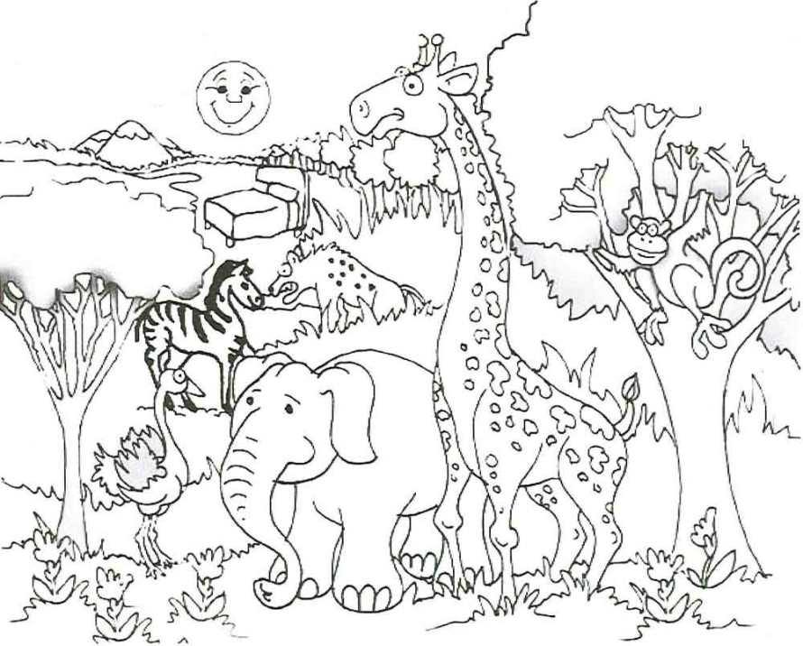 Ausmalbilder für Kinder Zoo 1