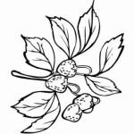 erdbeere 15