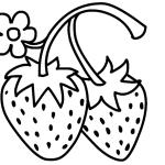 erdbeere 4