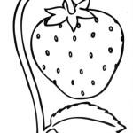 erdbeere 9