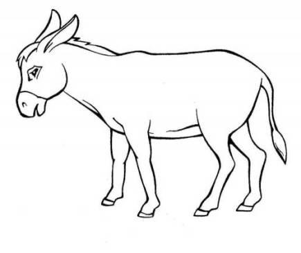 Ausmalbilder Für Kinder Esel 7