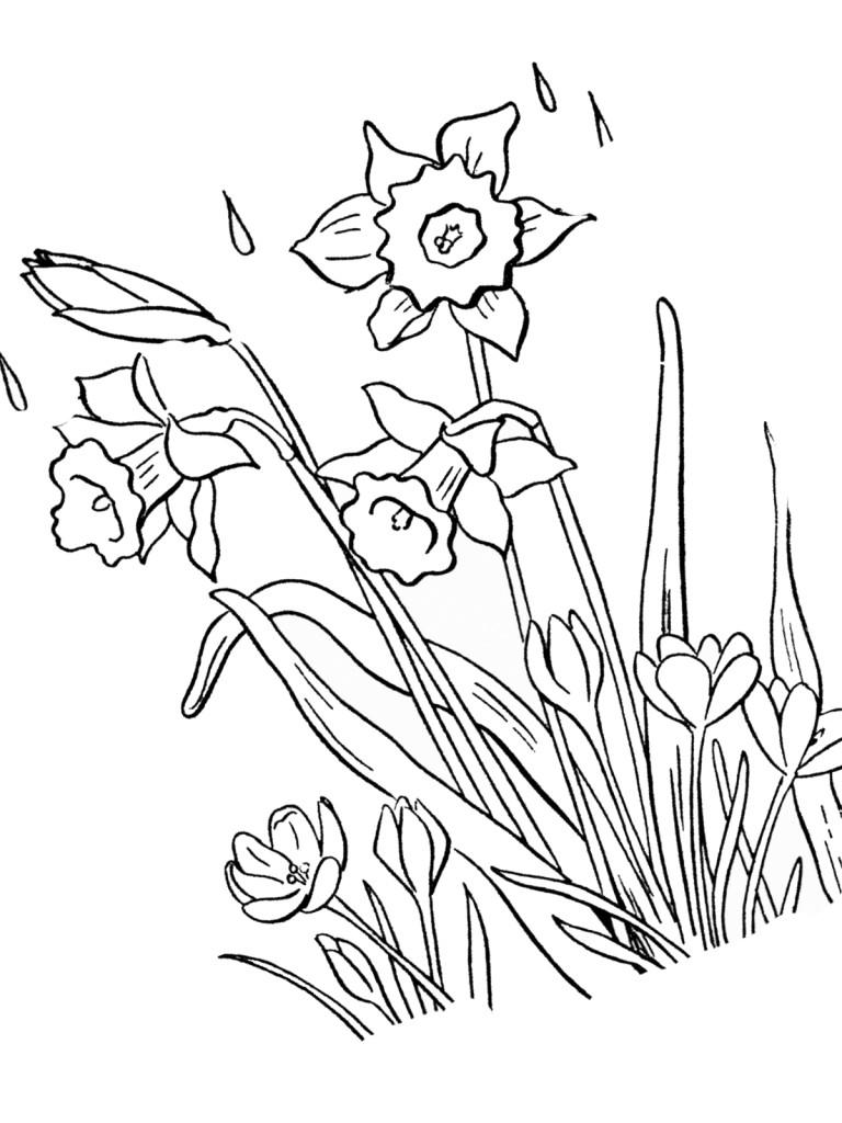 Frühling 12