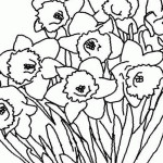 Frühling 16